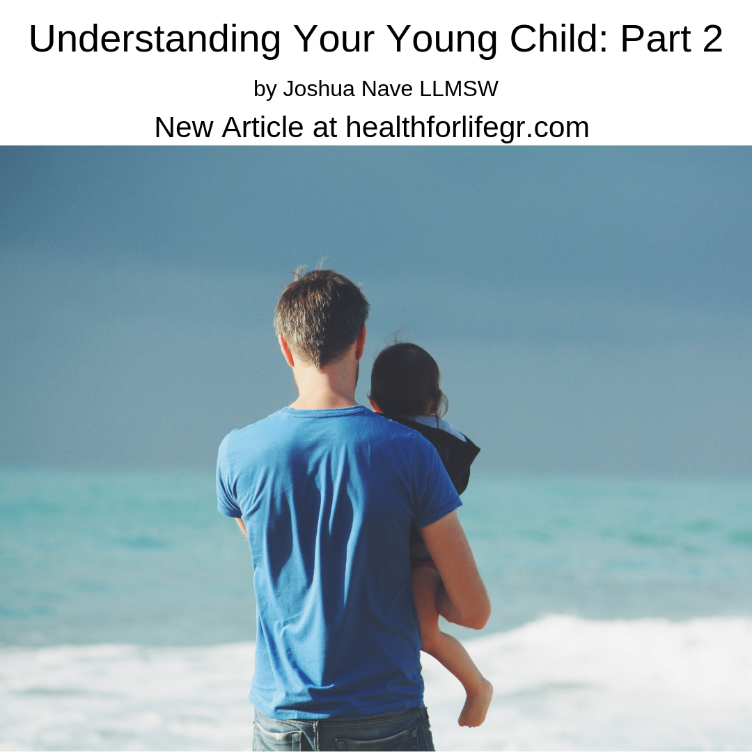 Understanding your young child: part 2